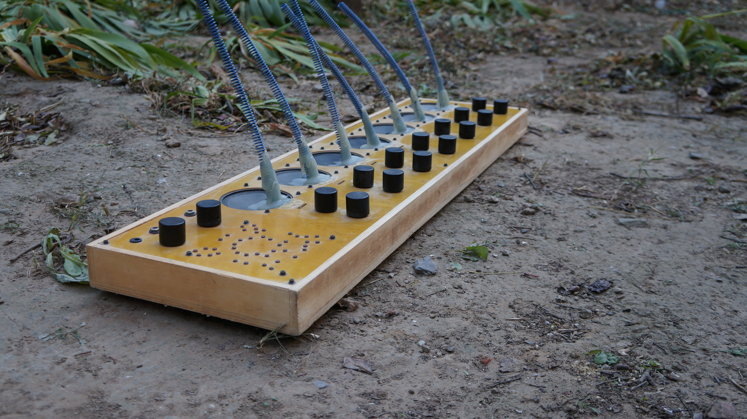 Aether Zither 1.JPG