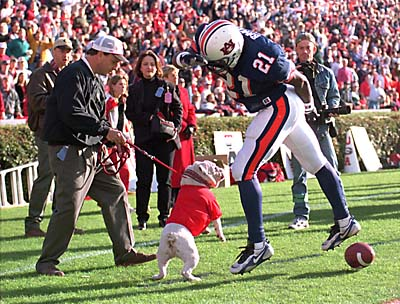 Auburn receiver Robert Baker's encounter with Georgia mascot Uga remains an enduring image in series history. (AP)