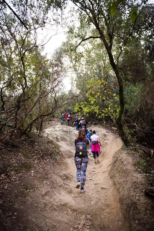 hike 3.jpg