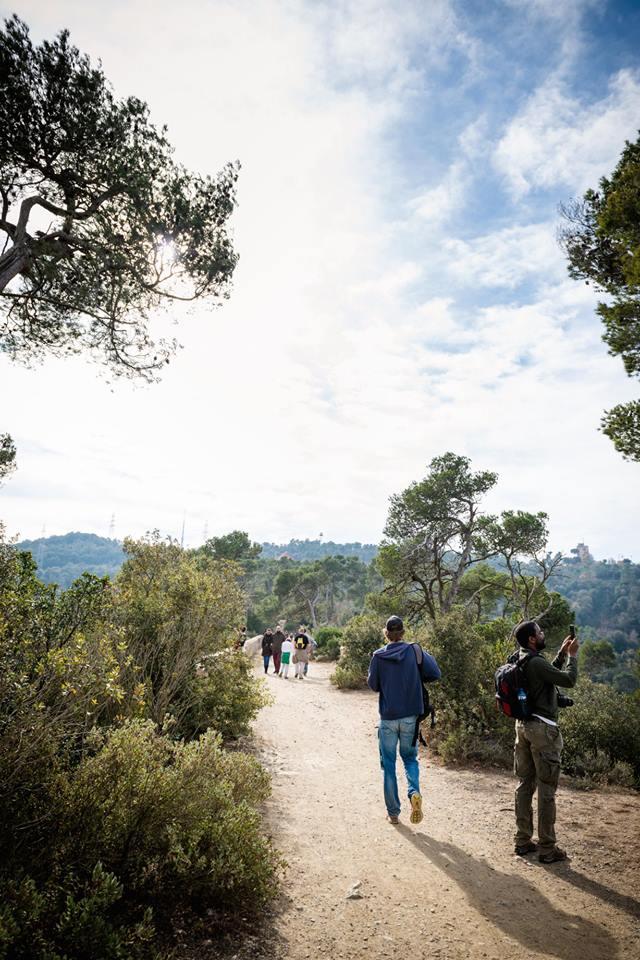hike 4.jpg