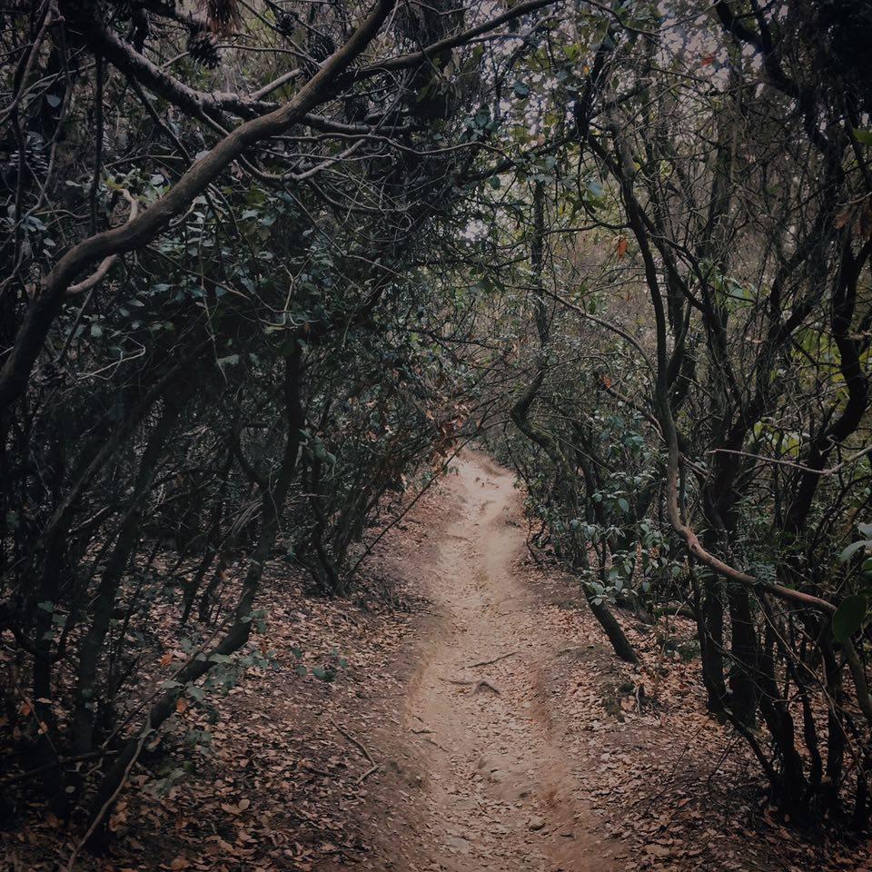 hike parcc.jpg