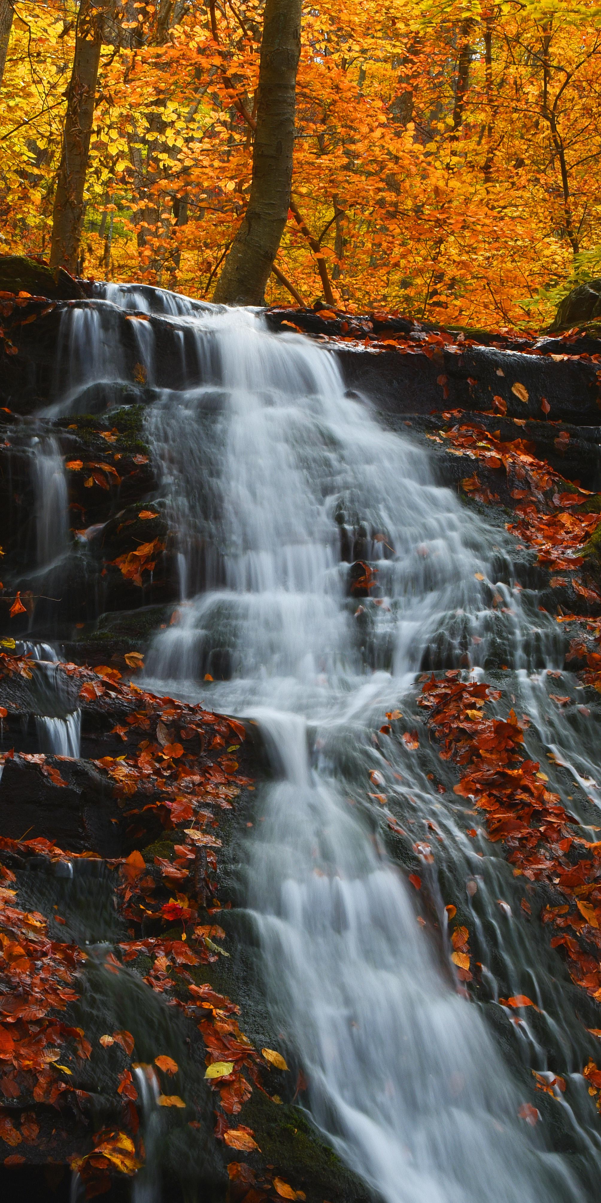 tallwaterfall.jpg