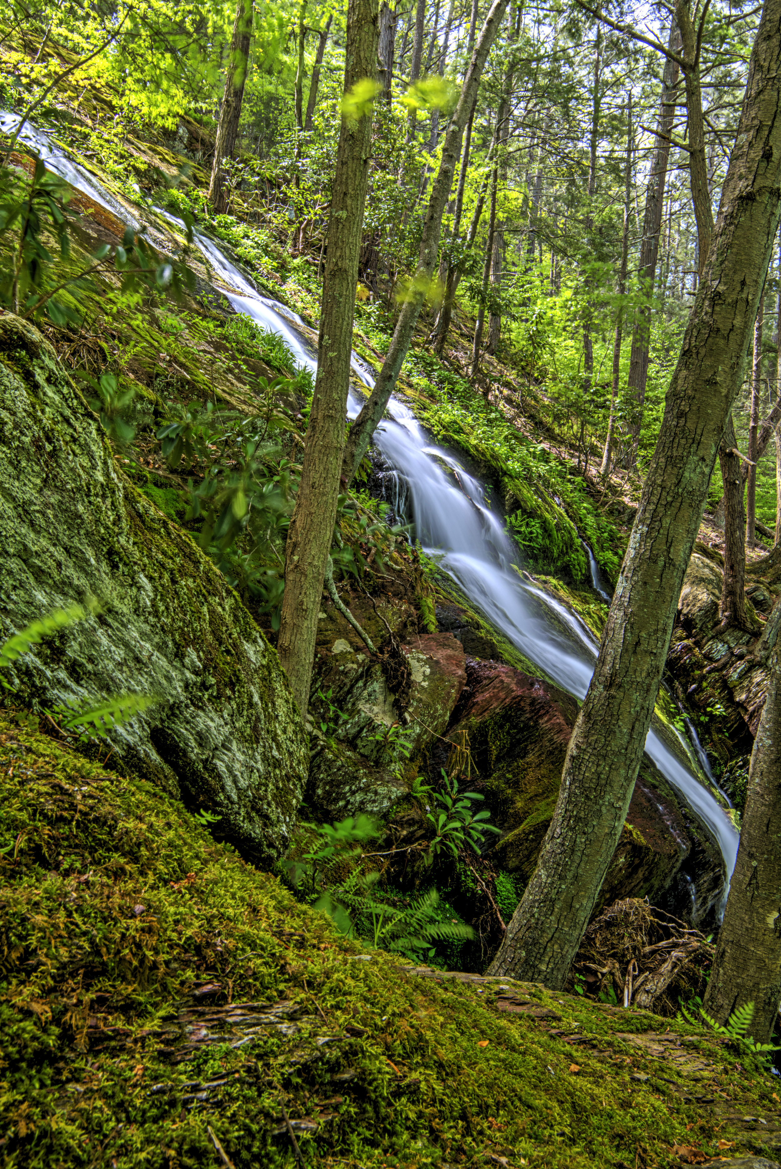 Falls in the woods.jpg