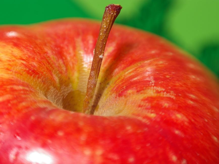 Apple Stem