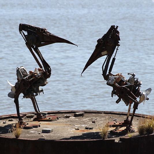 Pelicans_CU.jpg