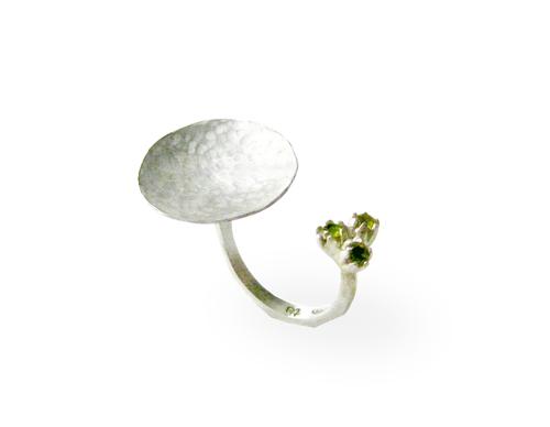 Dinah's ring.jpg