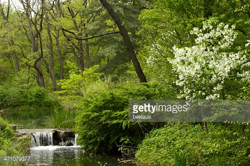 Photo by beklaus/iStock / Getty Images