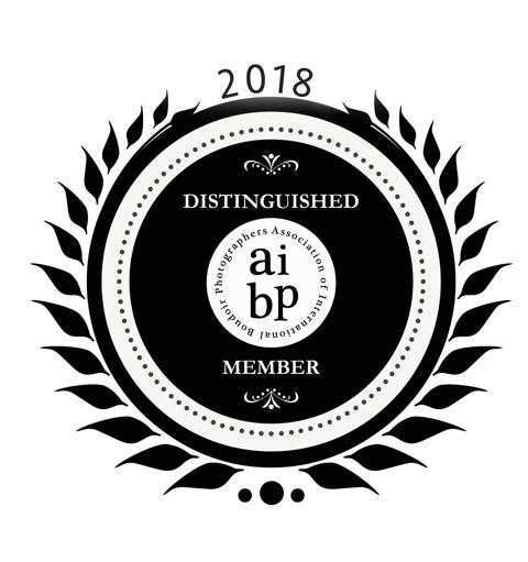 AIBP Member 2018