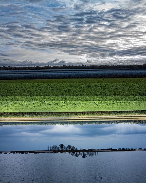 Land Water & Sky