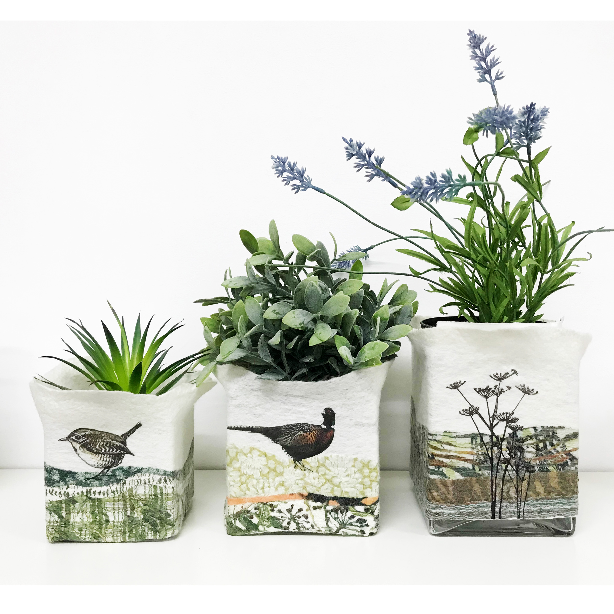 plantpots2.jpg