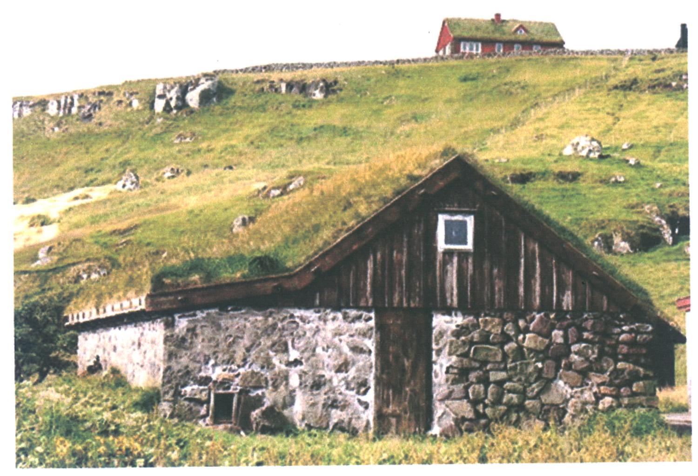 house w grass.jpg