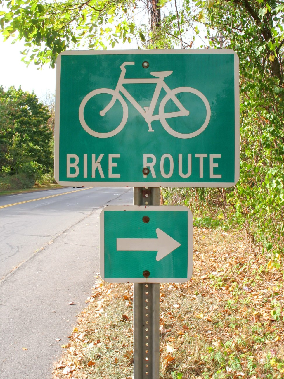 a-green-bike-route-sign-on-the-side-of-the-road_rFiqJd0ro-sm.jpg