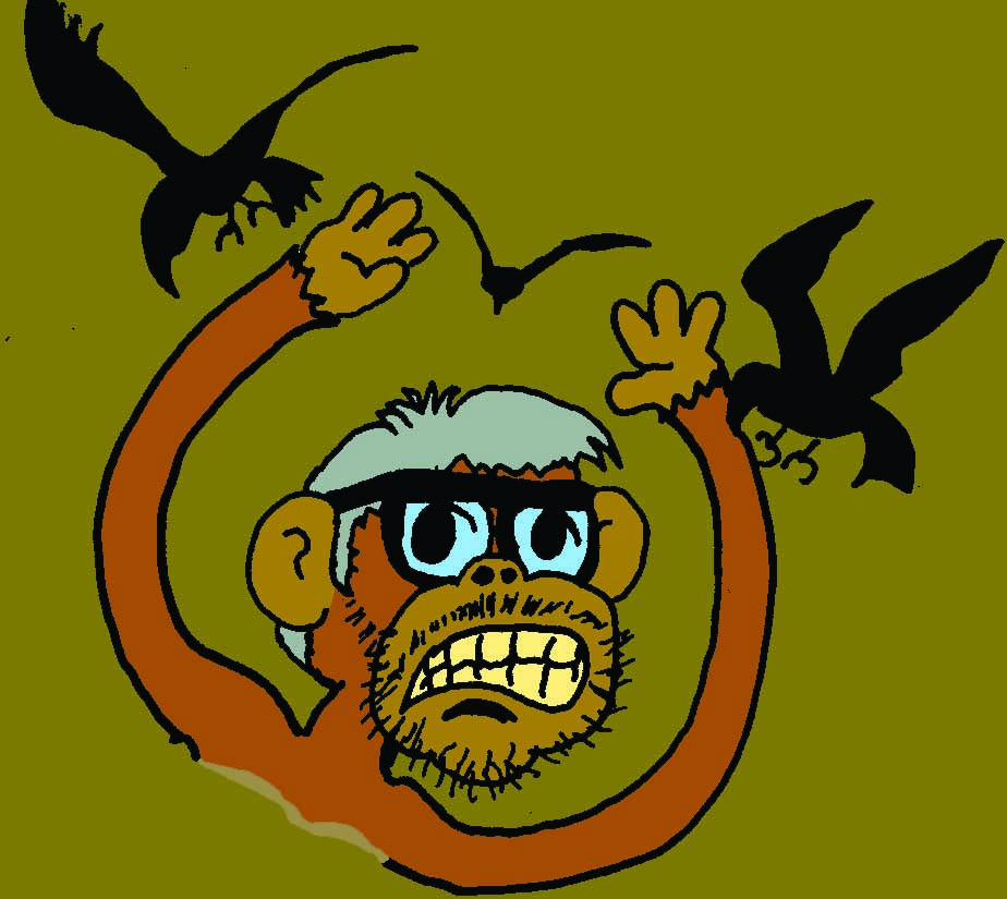 monkeybirds.jpg