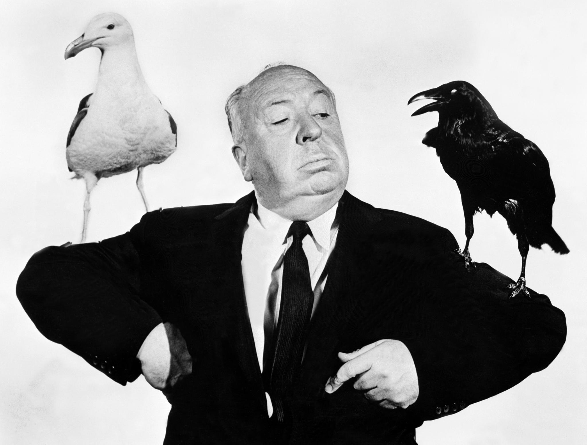 birdsfoghitchcock.jpg