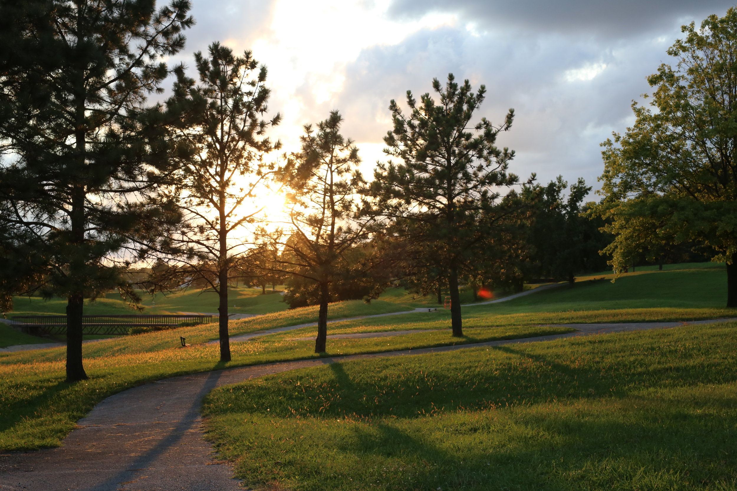 Active Living Trails - A how-to guide for promoting health in our parks.