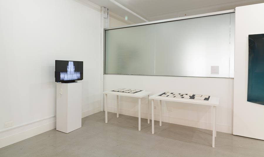 Liene Bosquê     Collecting Impressions – Peekskill 201 5    Video    12:06 min    Edition of 5, 1 AP