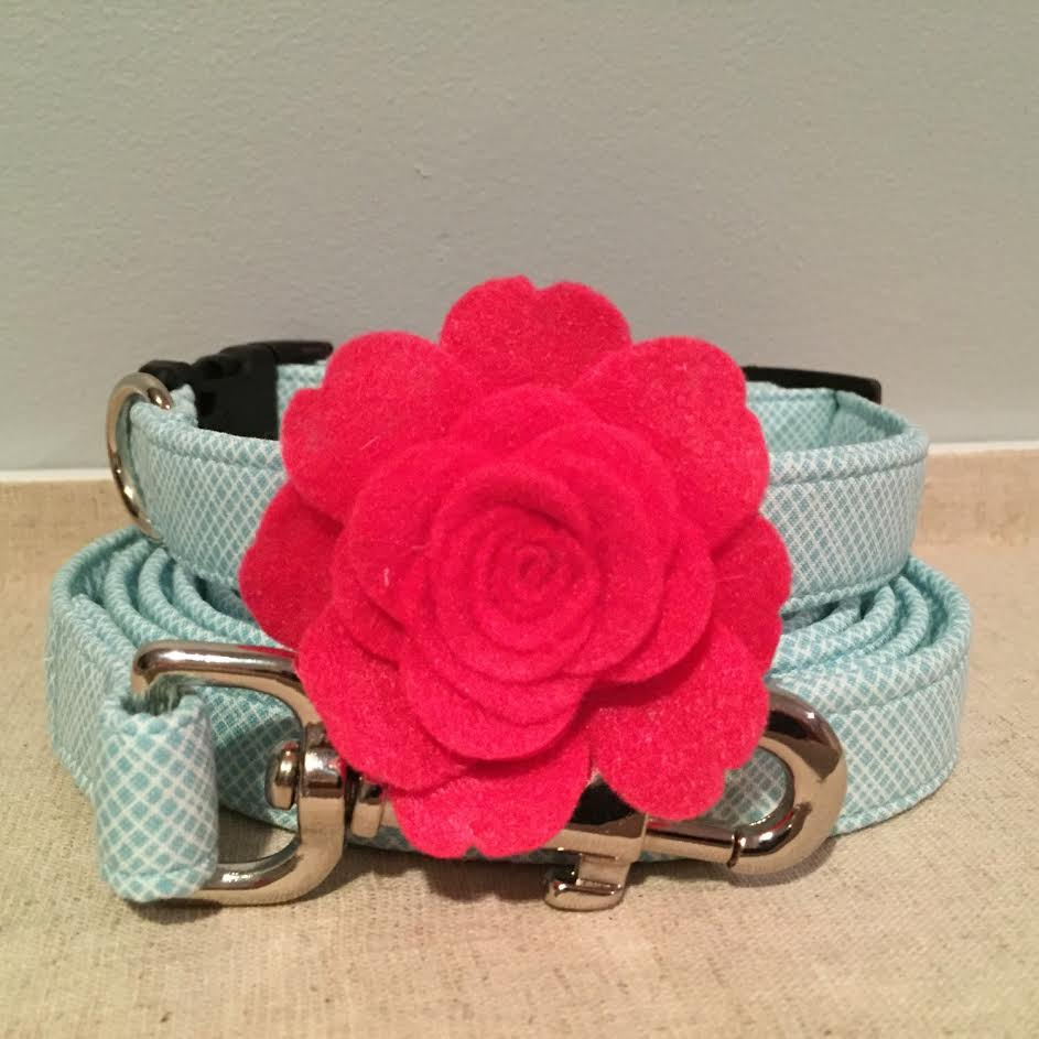 spoiled paws bowtique - pet collars & leases saturday