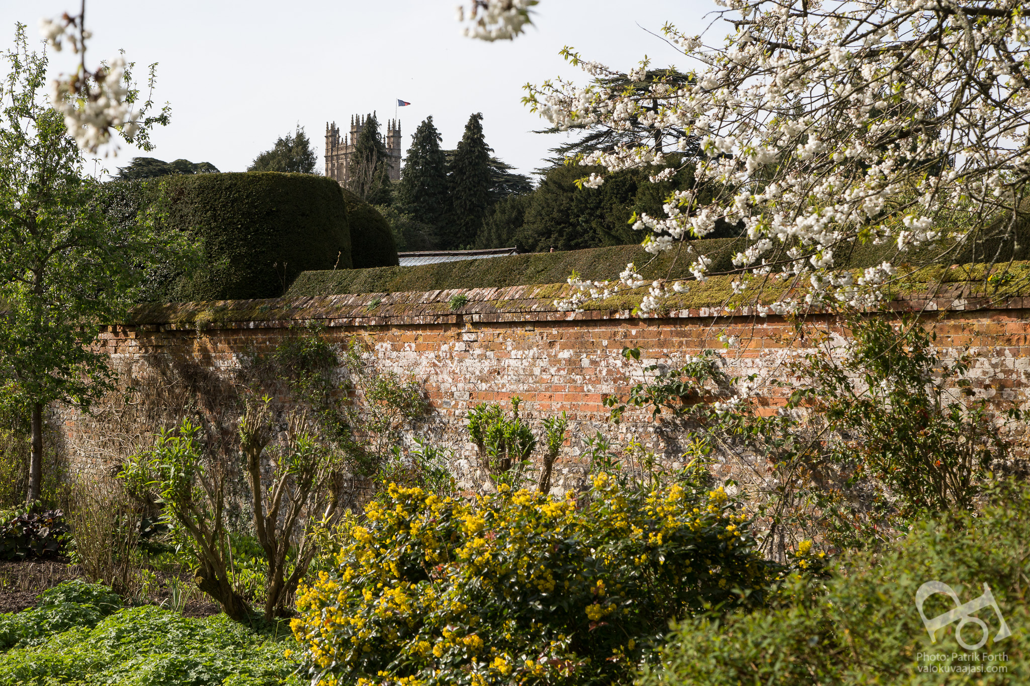 Behind the Walled Garden in the Secret Garden at Highclere Castle