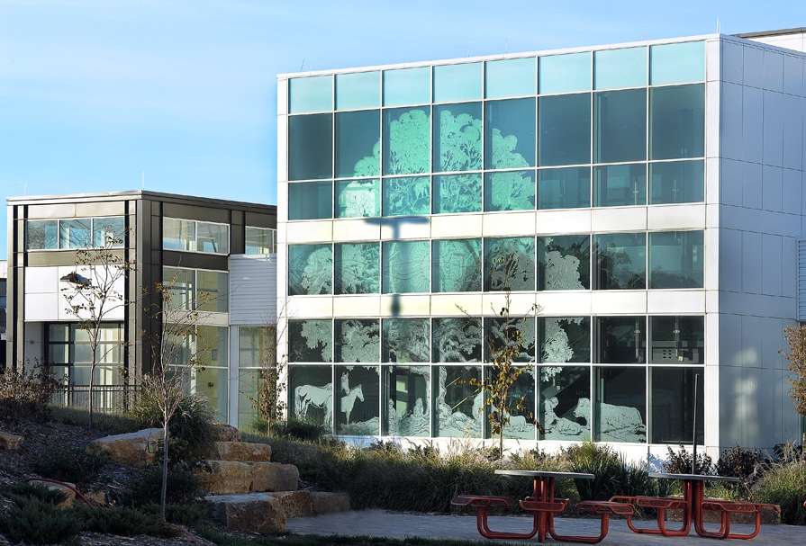 healing-tree-pegasus-studio-inc-etched-glass-sculpture-1.jpg