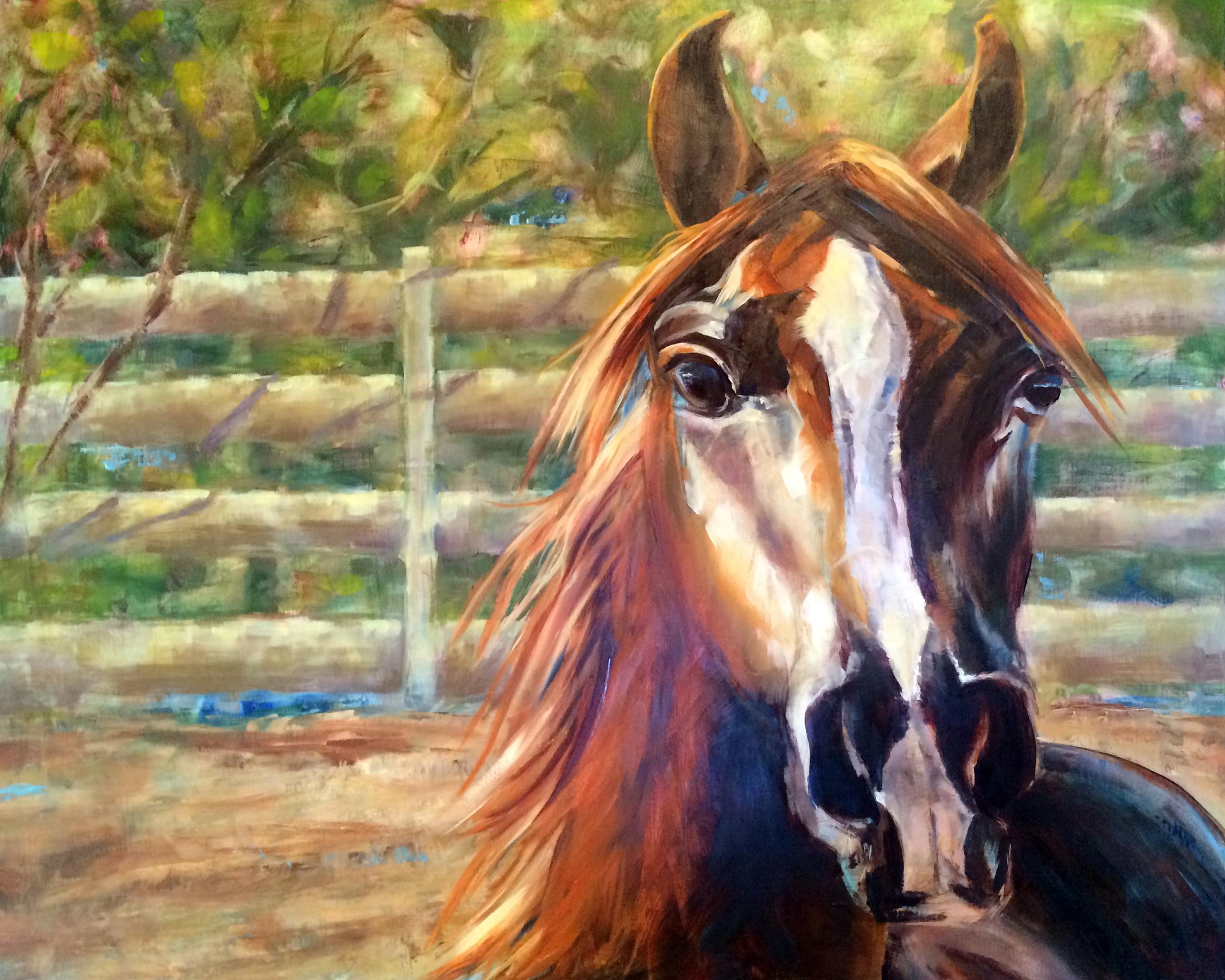Arabian Untitled