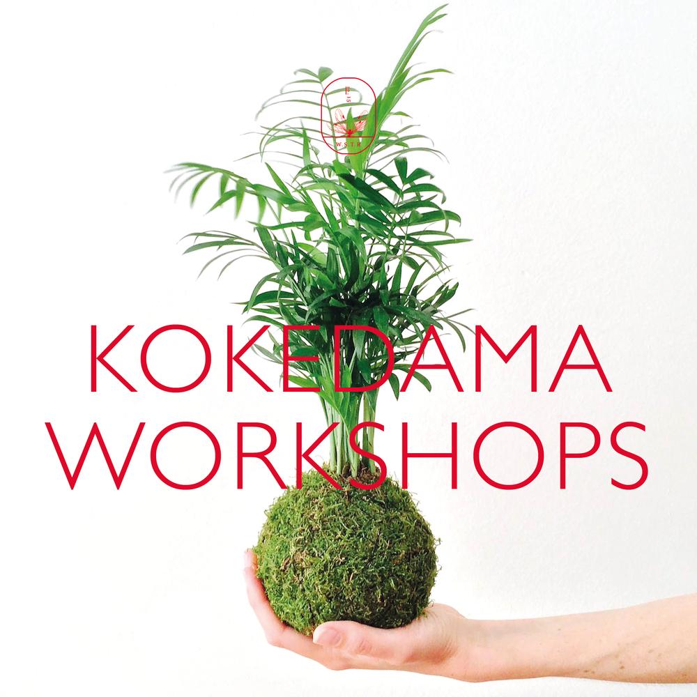 koke workshop.png