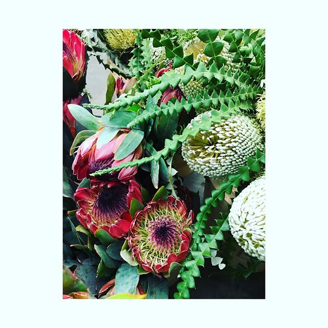 A whole lot of hell ya here! Special event blooms for a wild bash 🌿 . . . #eventflowers #protea #event #eventflowers #prettylittlething #simple #rustic #newwestflorist #newwest #newwestminster #madeinnewwest #bestofnewwest #shopnewwest #shopnewwestminster #buylocalbc #bloombloomroomnewwest #bouquet #wild #wildflowers #howistylemyblooms #flowersofinstagram #becauseflowers #instaflower #flowers #florist #floristlife