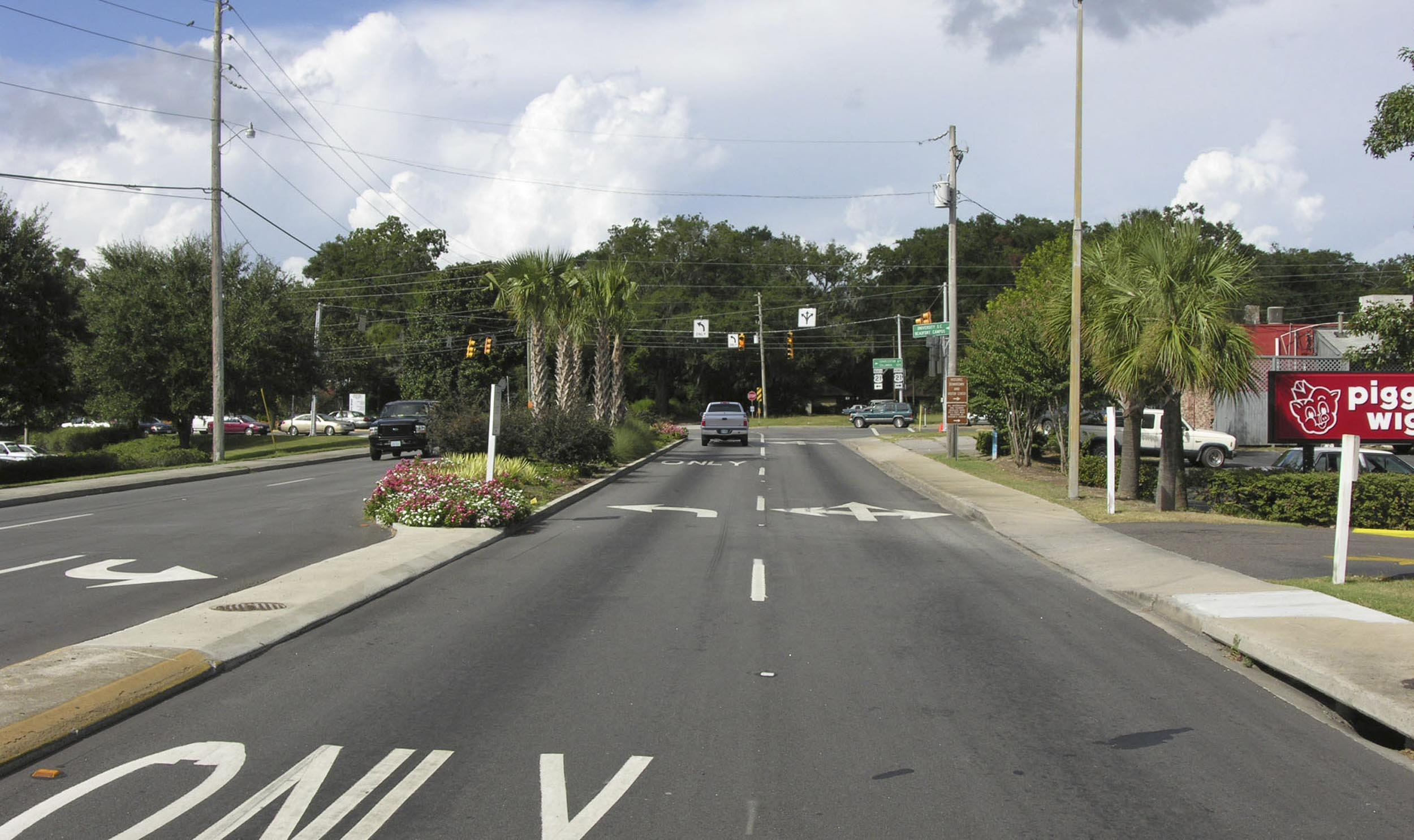 Ribaut Road -existing (2005)