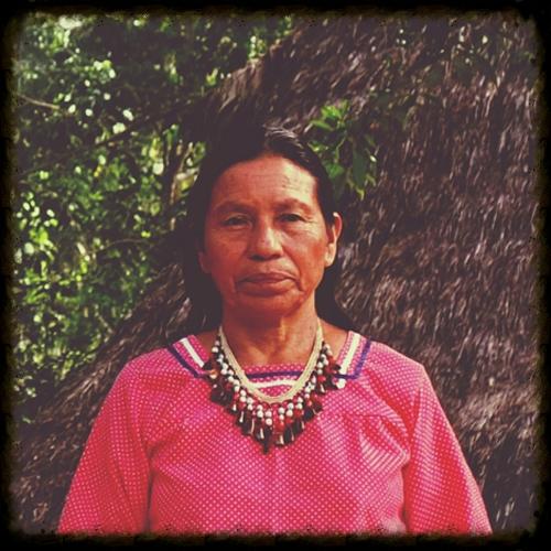 dona-ines-vargas-napusamai-ayahuasca.jpg
