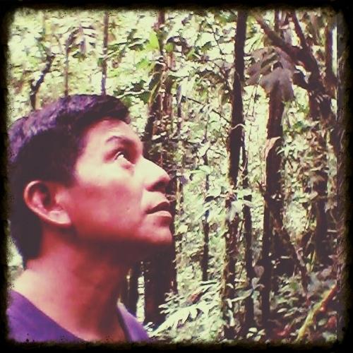 juan-andi-vargas-napusamai-ayahuasca.jpg