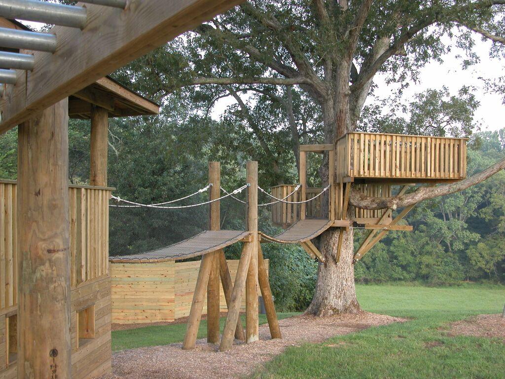 Treehouse 14.jpeg
