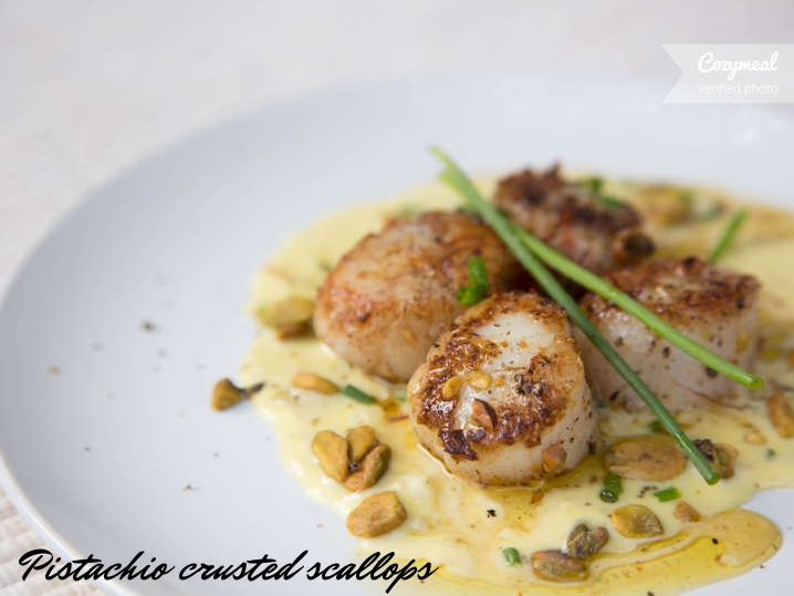 Scallops-with-crusted--C0CC446-2.jpg