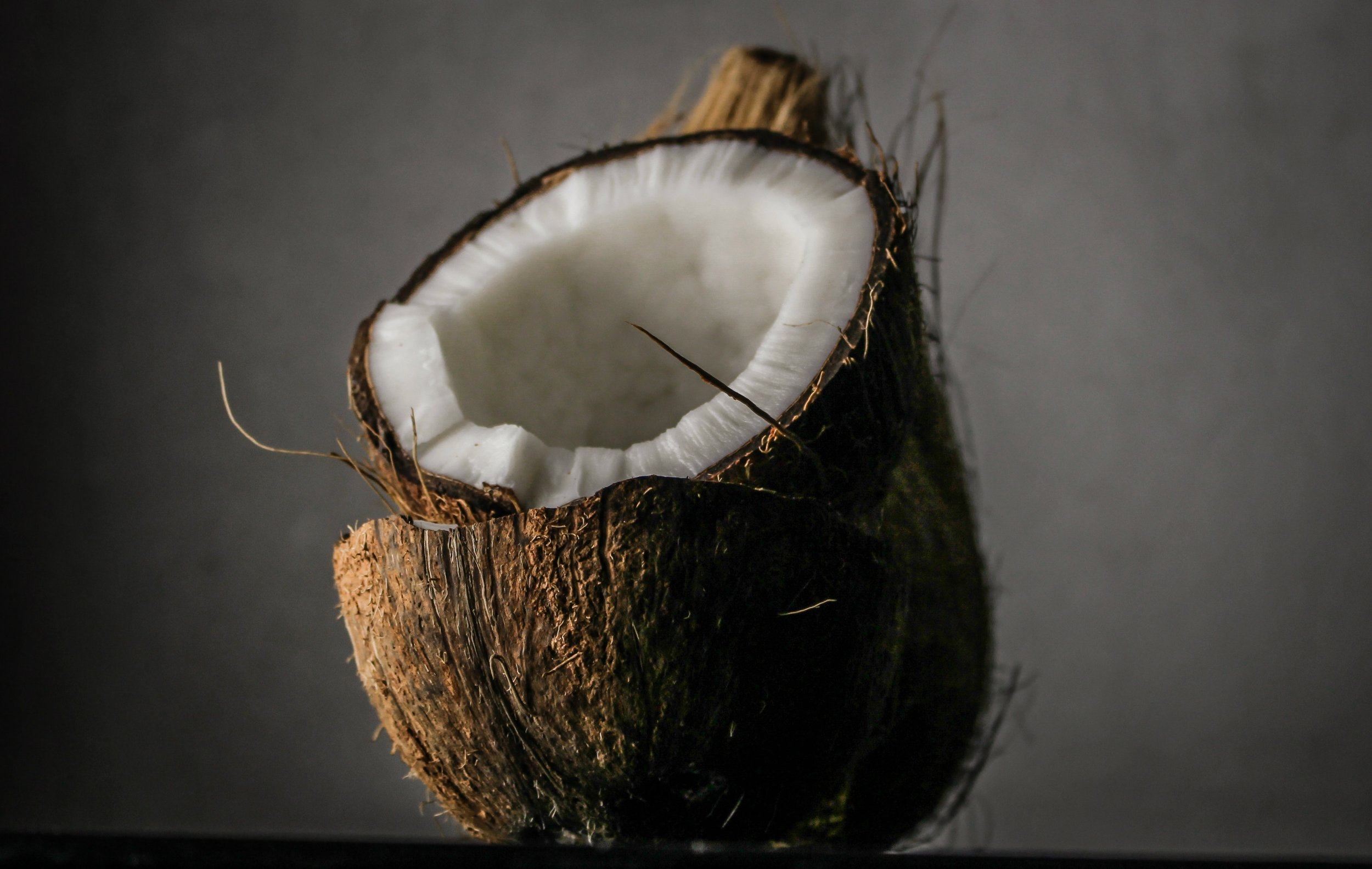 blur-close-up-coconut-1652002.jpg