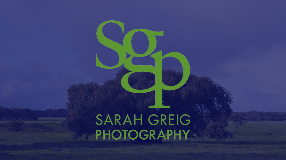 This logo, designed for a boutique photographer in New York City, uses overlapping bold letters to form a strong graphic with great impact.  Often combined with a navy stripe, the branding is unique and stands apart in the market Sarah competes in. At the same time, the logo doesn't compete with her main focus - the photographer's subjects!
