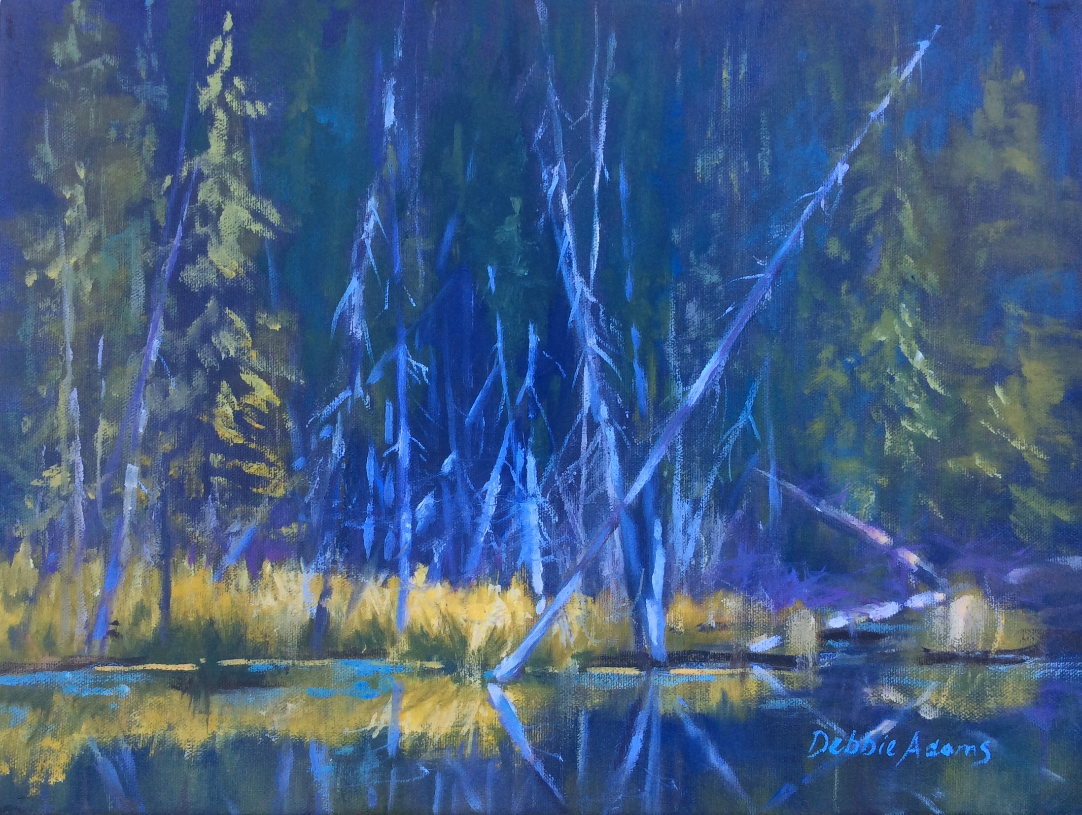 Evening at the Beaver Ponds 11x14 Oil