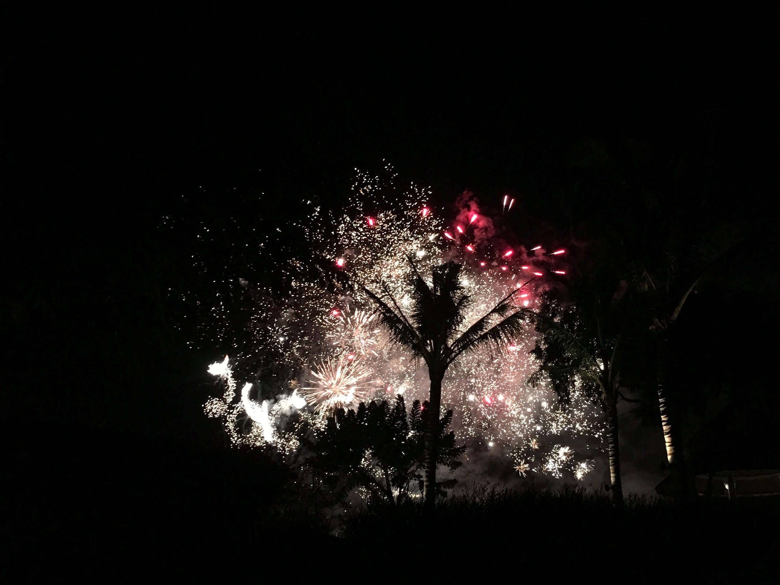 And the wedding ended in a fireworks display!