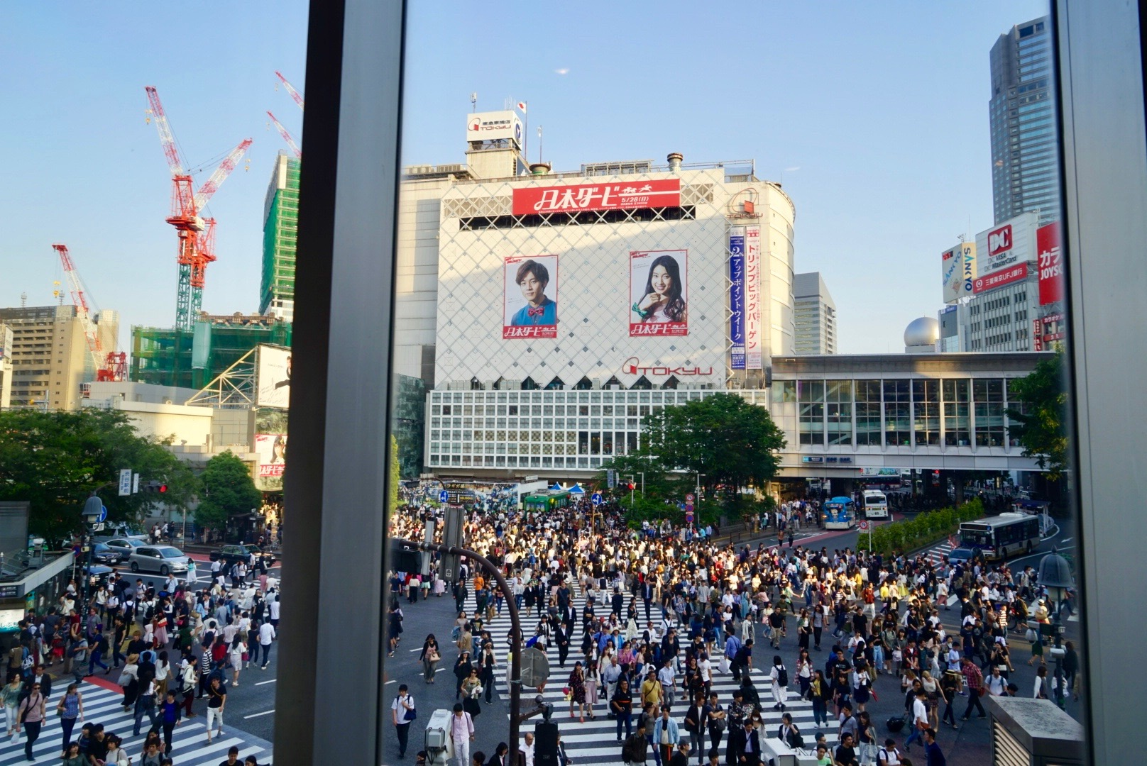 Shibuya crossing - said to be the busiest pedestrian crossing in the world. View from a starbucks on the 2nd floor. So many tourists at this window trying to get this shot - finally it was my turn!