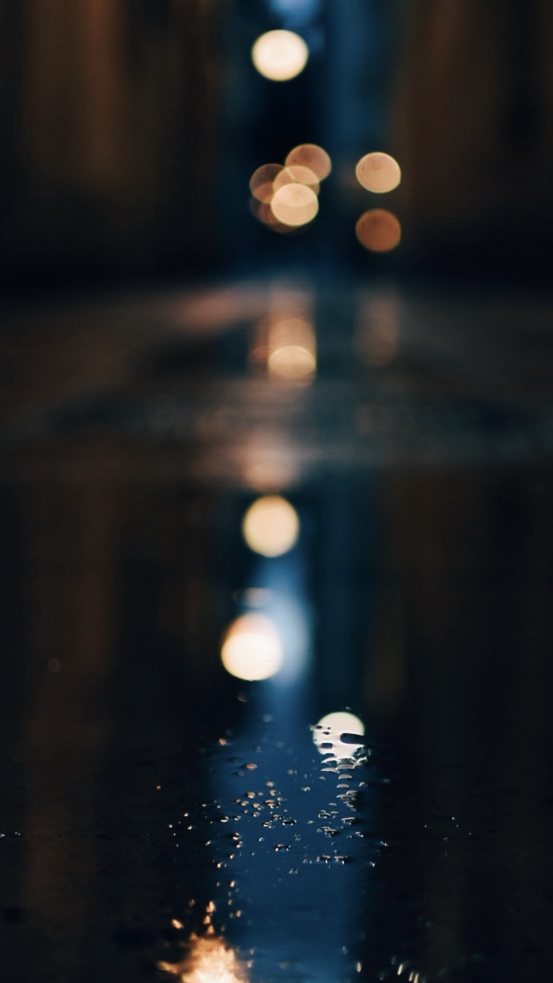 light background.PNG