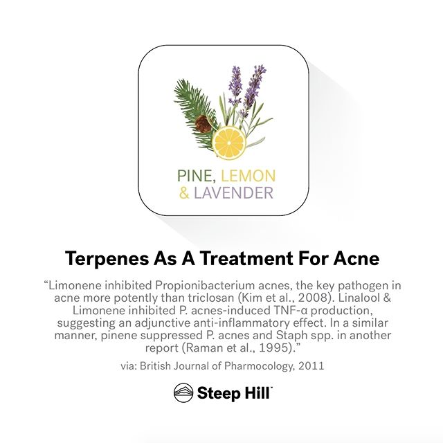 Looking for a natural acne remedy? Try a terp-rich #cannabis topical.  Learn more about terpenes during #MJBizCon (booth 4504) in #LasVegas!  #mmj #weed #marijuana #science #terps #dabs #stoners #cannabiscommunity #medicalmarijuana #mjbiz #steephilllab #dablife #dabbers #stonerchicks #skincare #makeup #pimples
