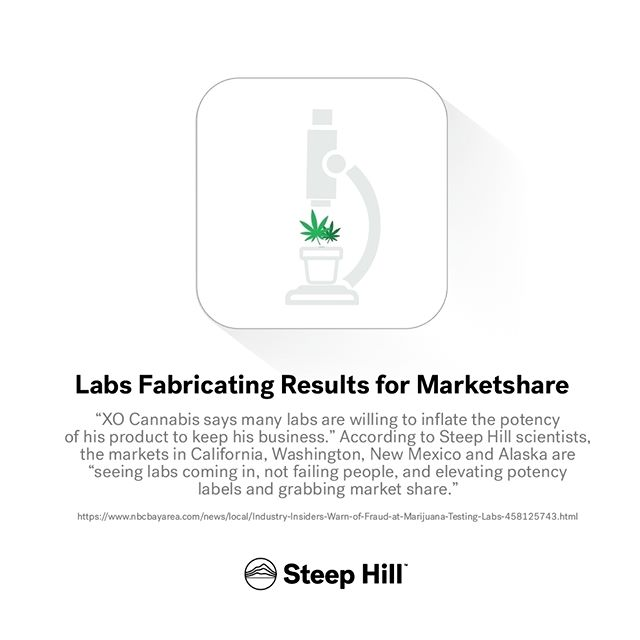 """""""Dr. Donald Land and Dr. Reggie Gaudino are two of the scientists in charge of running Berkeley's Steep Hill Labs, one of the nation's largest testing companies. They say the company, with labs in six states, is routinely approached by customers trying to boost potency numbers. """"In almost every state we operate in we have someone approach us and say, 'Hey, what would it take to get these numbers changed?'"""" Gaudino said."""" via #NBCBayArea  #mmj #cannabis #marijuana #science #THCnation #regulation #weedfeed #stoners #THC #medicalcannabis #cannabiscommunity"""