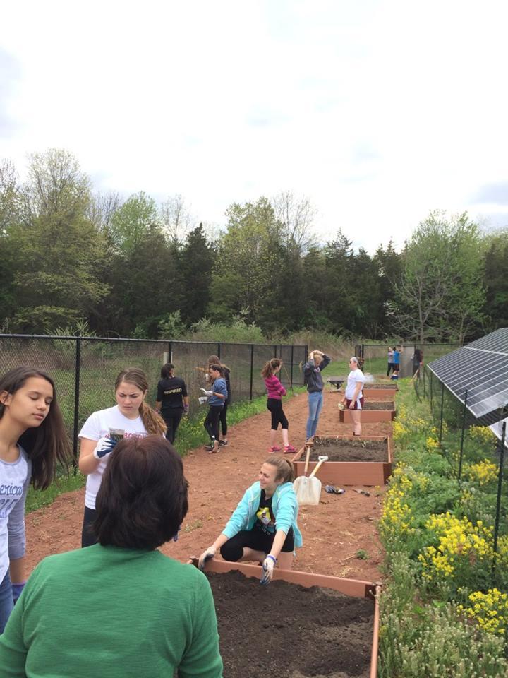 Garden3-30HF.jpg