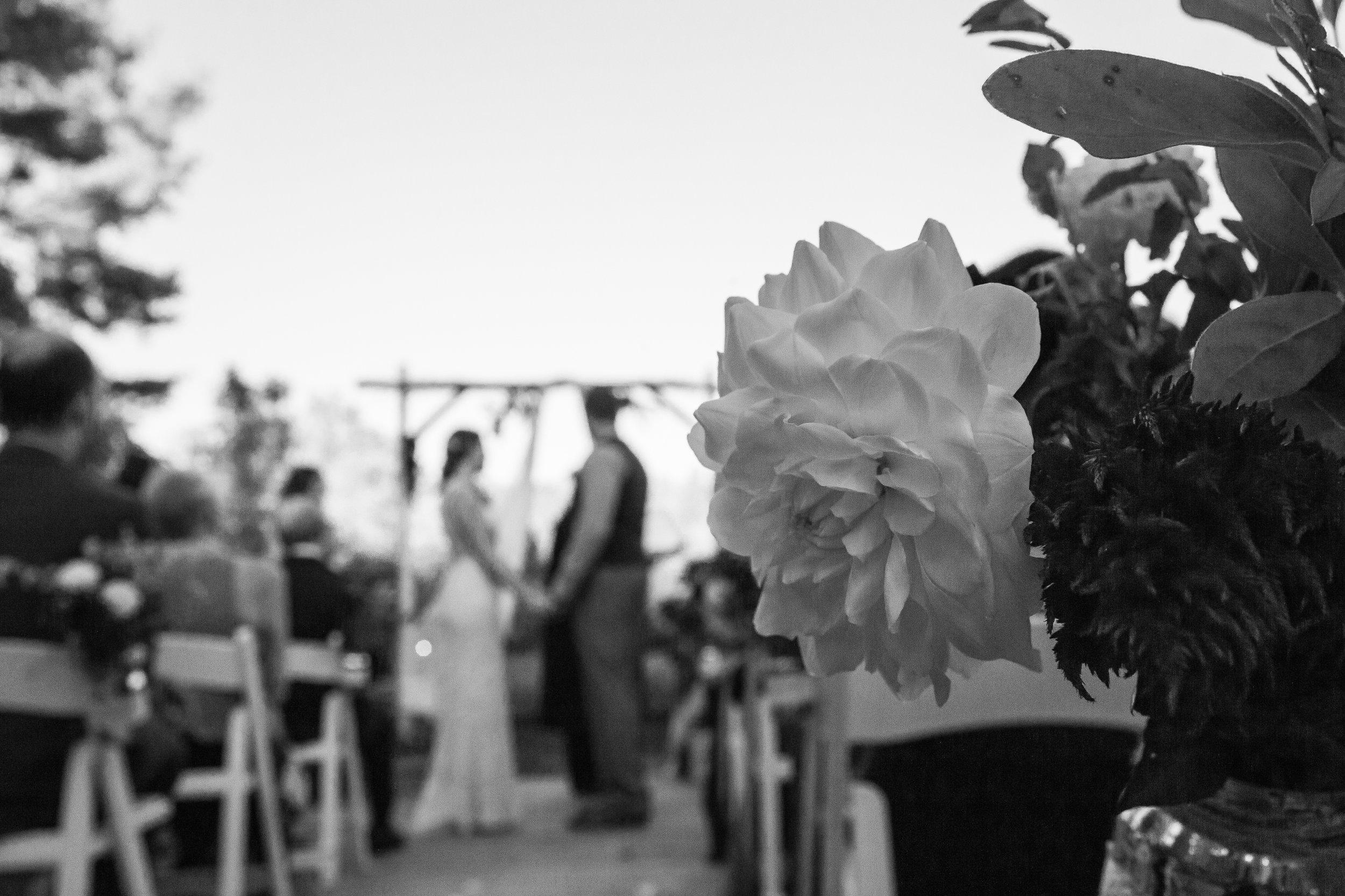 Airlie Center Virginia Wedding_-56.jpg