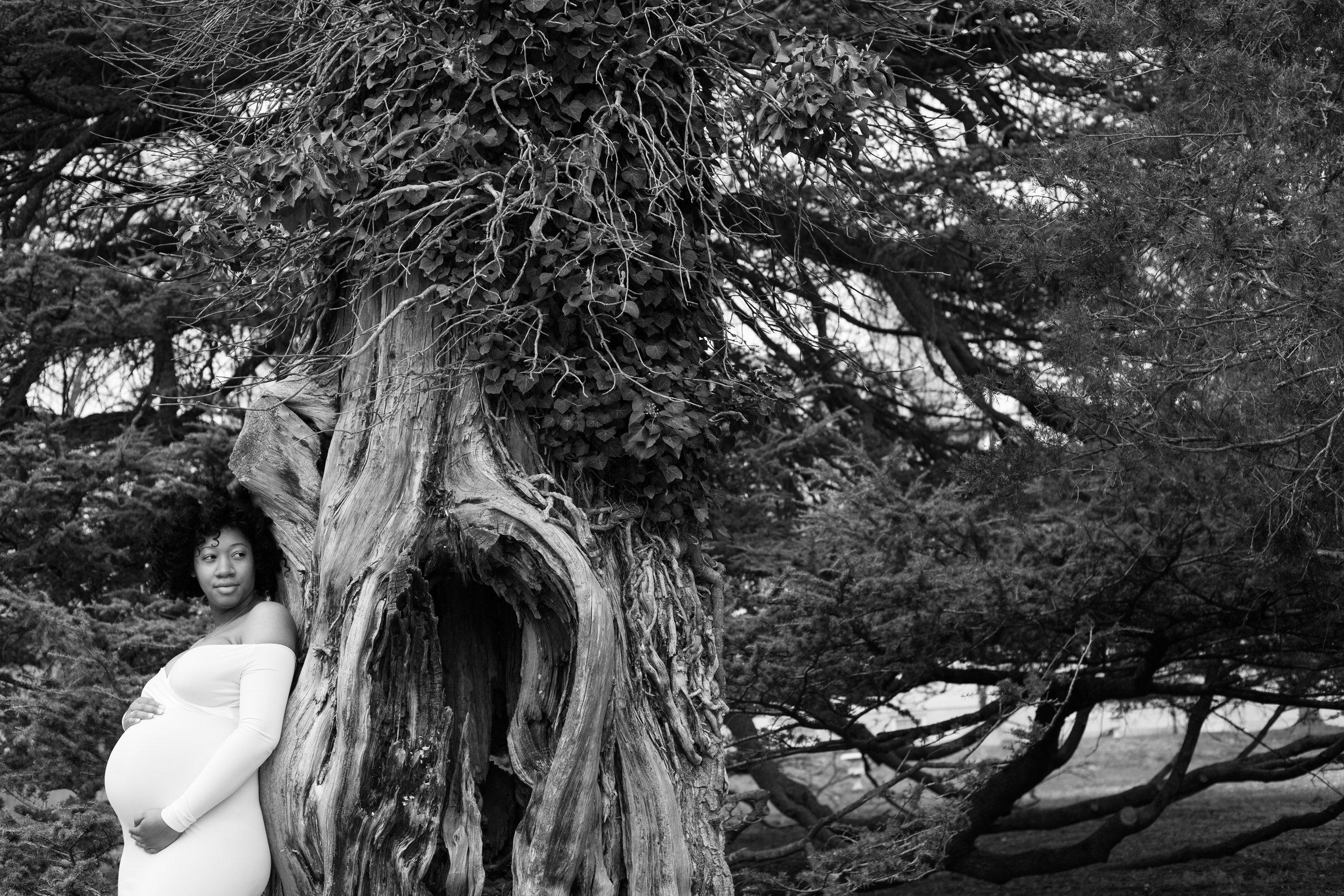 Maryland Maternity Photographer-18.jpg