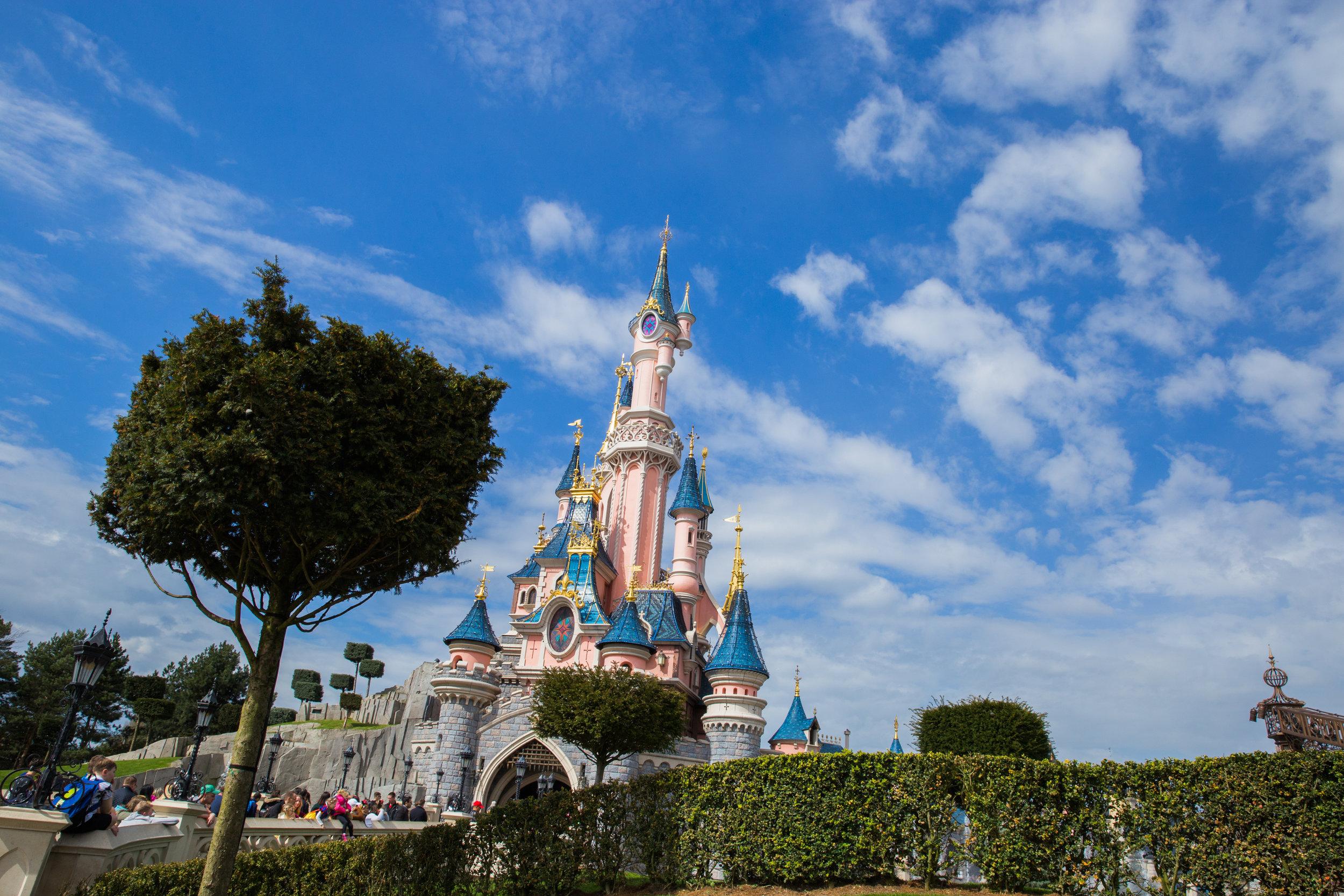Disneyland Wedding Megapixels Media-9.jpg