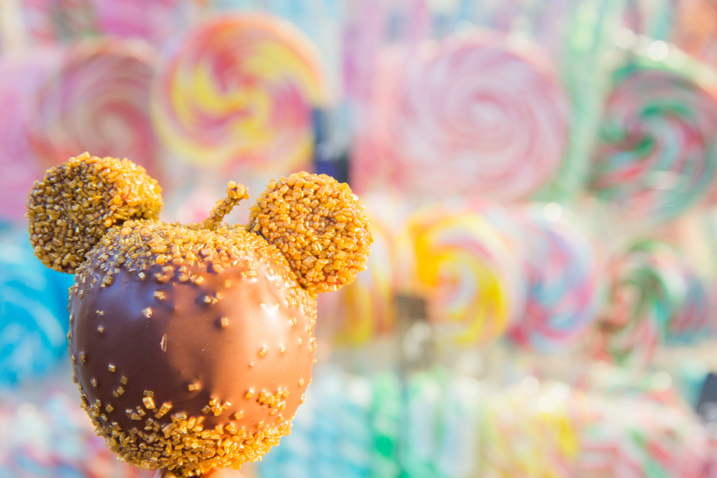 Disneyland Wedding Megapixels Media-19.jpg