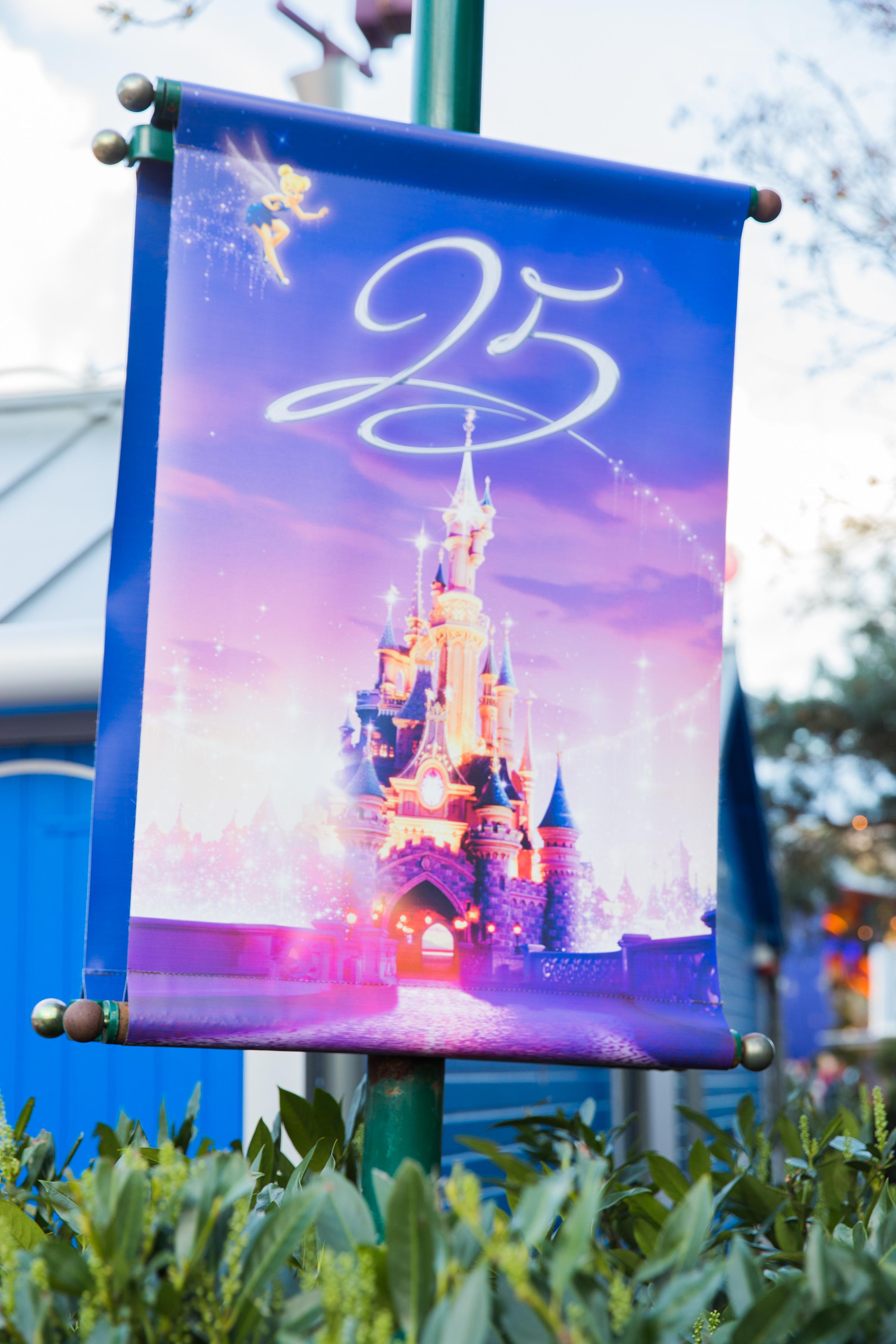 Disneyland Wedding Megapixels Media-20.jpg