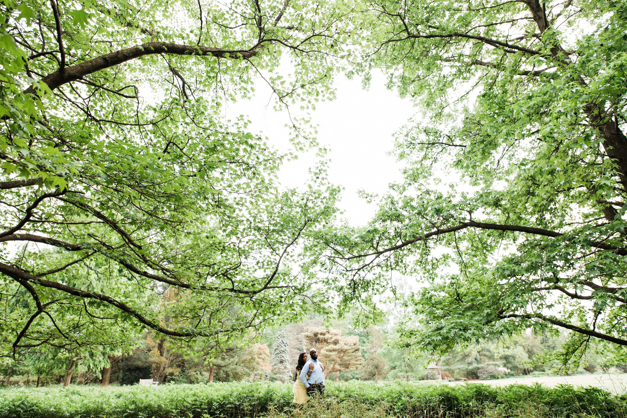 Cylburn Arboretum Wedding Photography  Megapixels Media Engagement Photographers-10.jpg