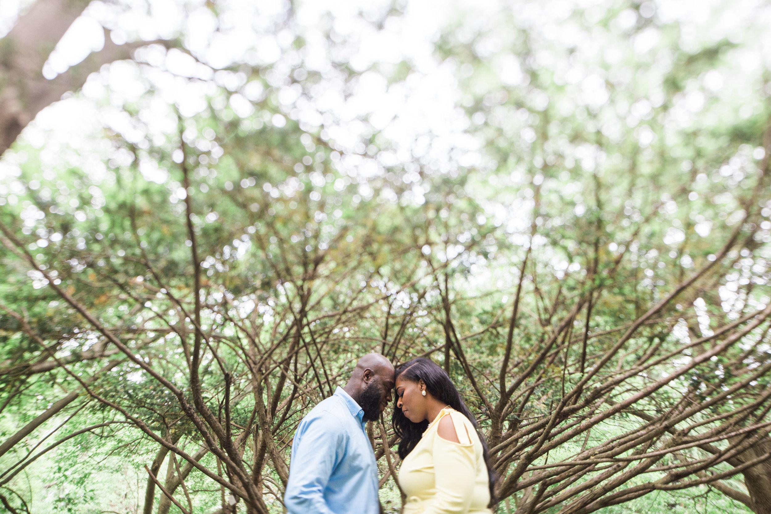 Cylburn Arboretum Wedding Photography  Megapixels Media Engagement Photographers-12.jpg