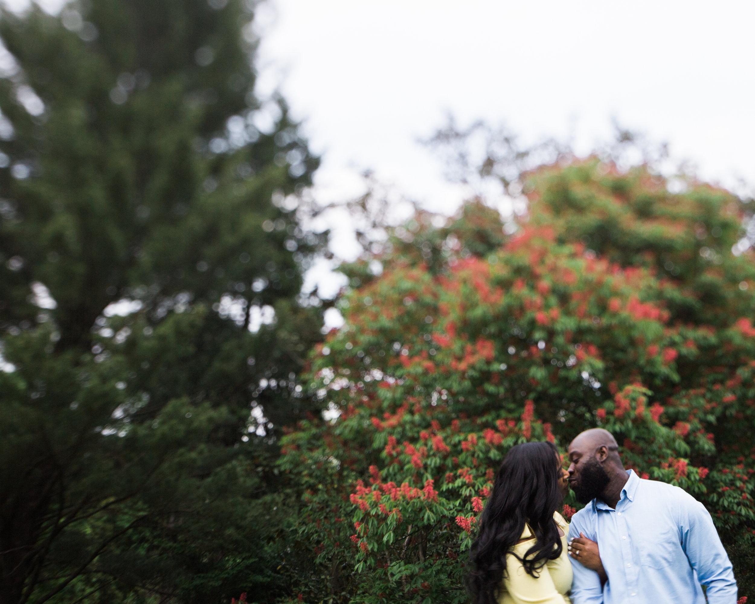 Cylburn Arboretum Wedding Photography  Megapixels Media Engagement Photographers-27.jpg