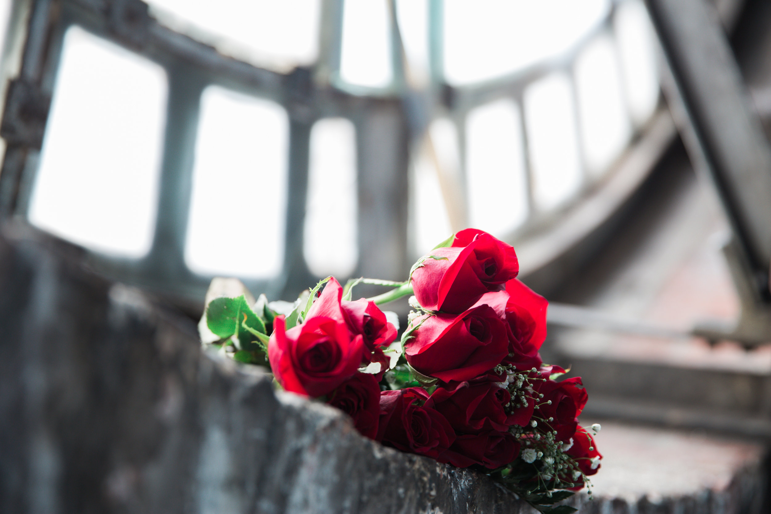 Red Roses Meagan Terrell Bromo Arts Tower Engagement Session Megapixels media Photography-3.jpg