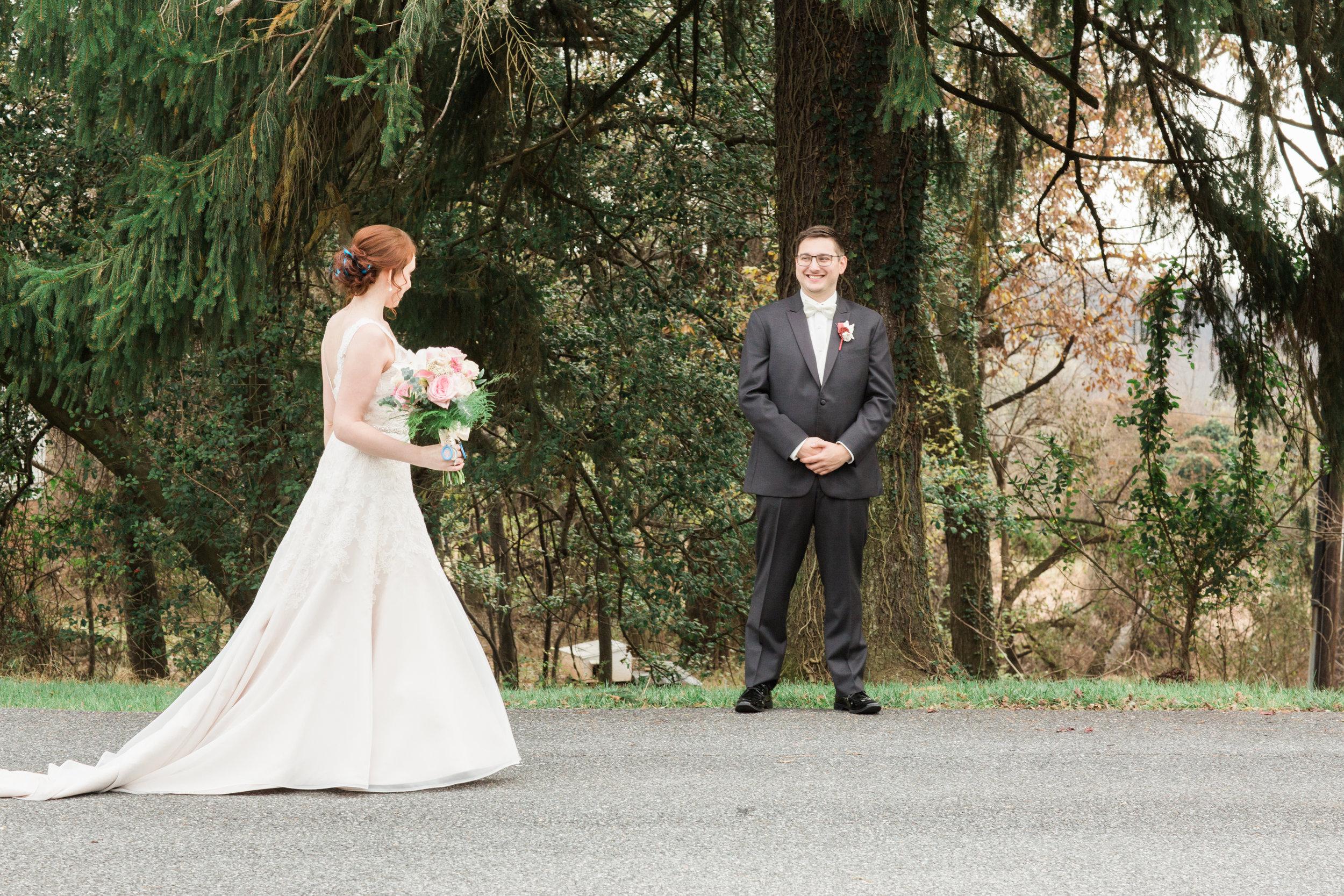 Harry Potter Wedding at Overhills Mansion Catonville Maryland Wedding Photographers Megapixels Media (46 of 134).jpg